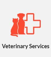 Box Hill Vet Services